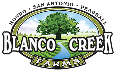 Blanco Creek Farms